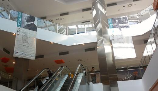 El Centro Comercial Albufera Plaza, con Vallecas Calle del Libro