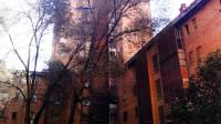 Denuncian que unos árboles podrían caer sobre sus casas